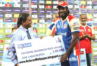 PHOTOS IPL Chris Gayle RCB Cricketer To involved in IPL Fixing Report Chris Gayle 2013 News