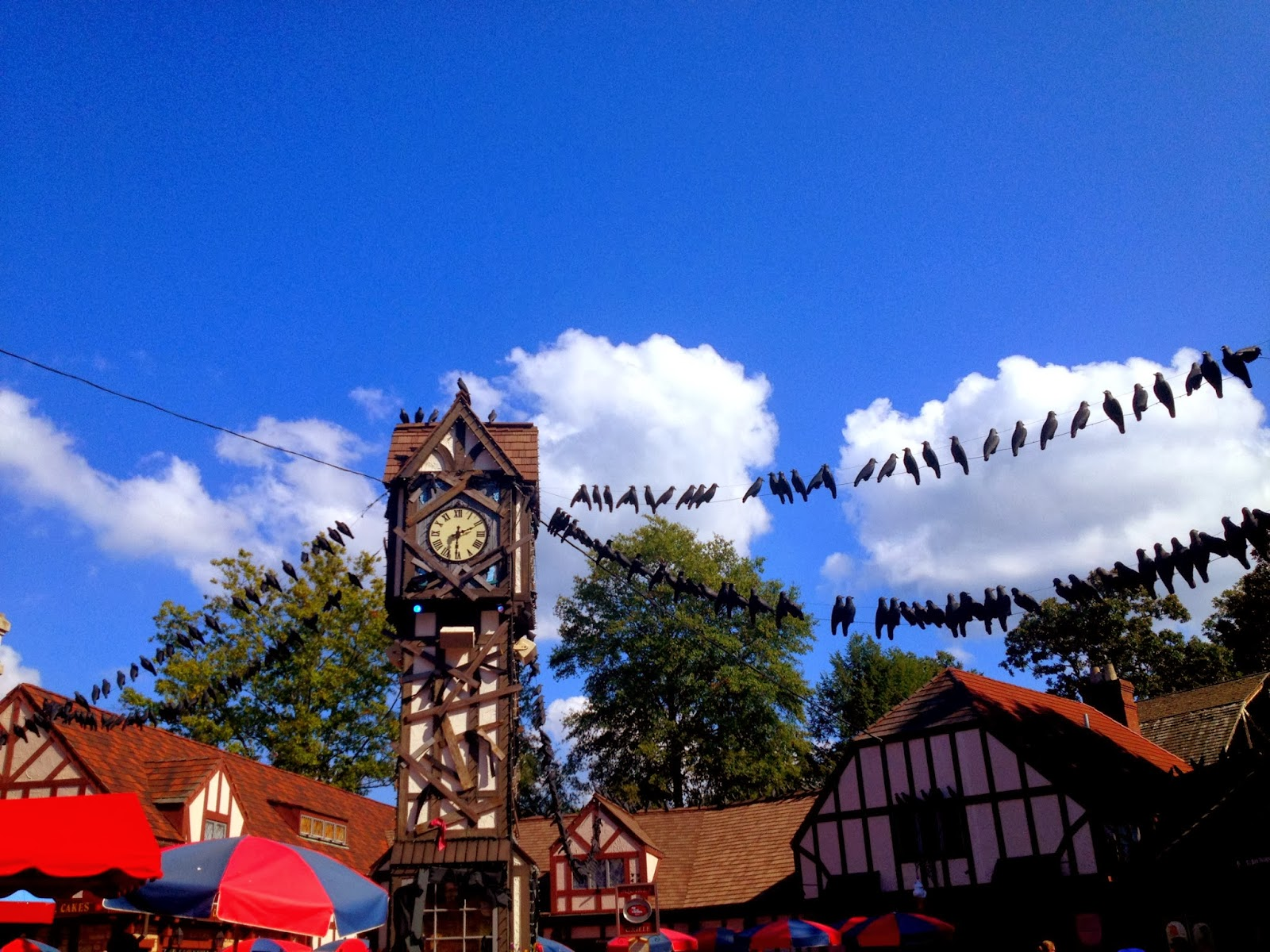 A couple 39 s adventure busch gardens howl o scream - Busch gardens williamsburg halloween ...