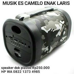 MUSIK ES CAMELO