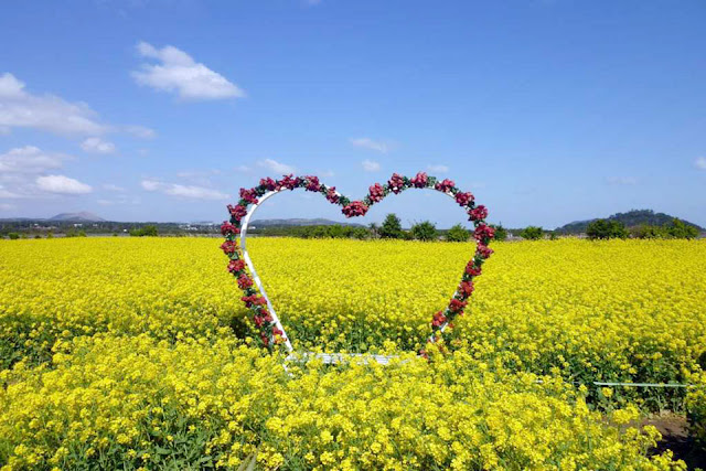 Jeju Island for A Honeymoon Paradise of Love