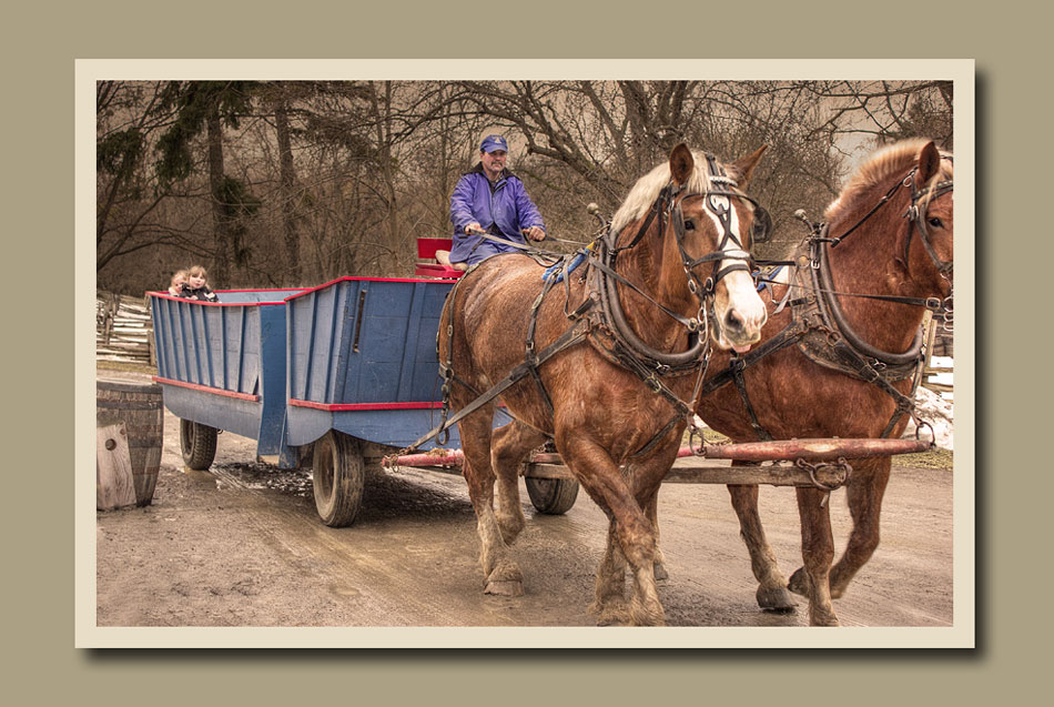 Mystery Days at Black Creek Pioneer Village.  Holly Cawfield Photography
