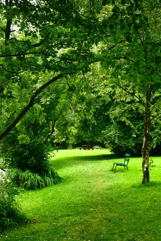 Oughterard park, green trees, benches