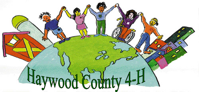 Haywood County 4-H