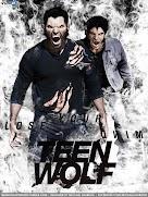 Teen Wolf : Season 4