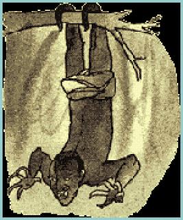 gambar asan bonsam