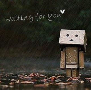 Wallpaper Terbaru Danbo 2013