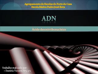 Sistema neuro hormonal 9o ano powerpoint download