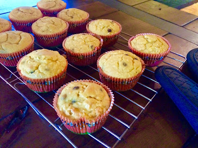 gluten free pumpkin chocolate chip muffins and ginger pumpkin spice muffins