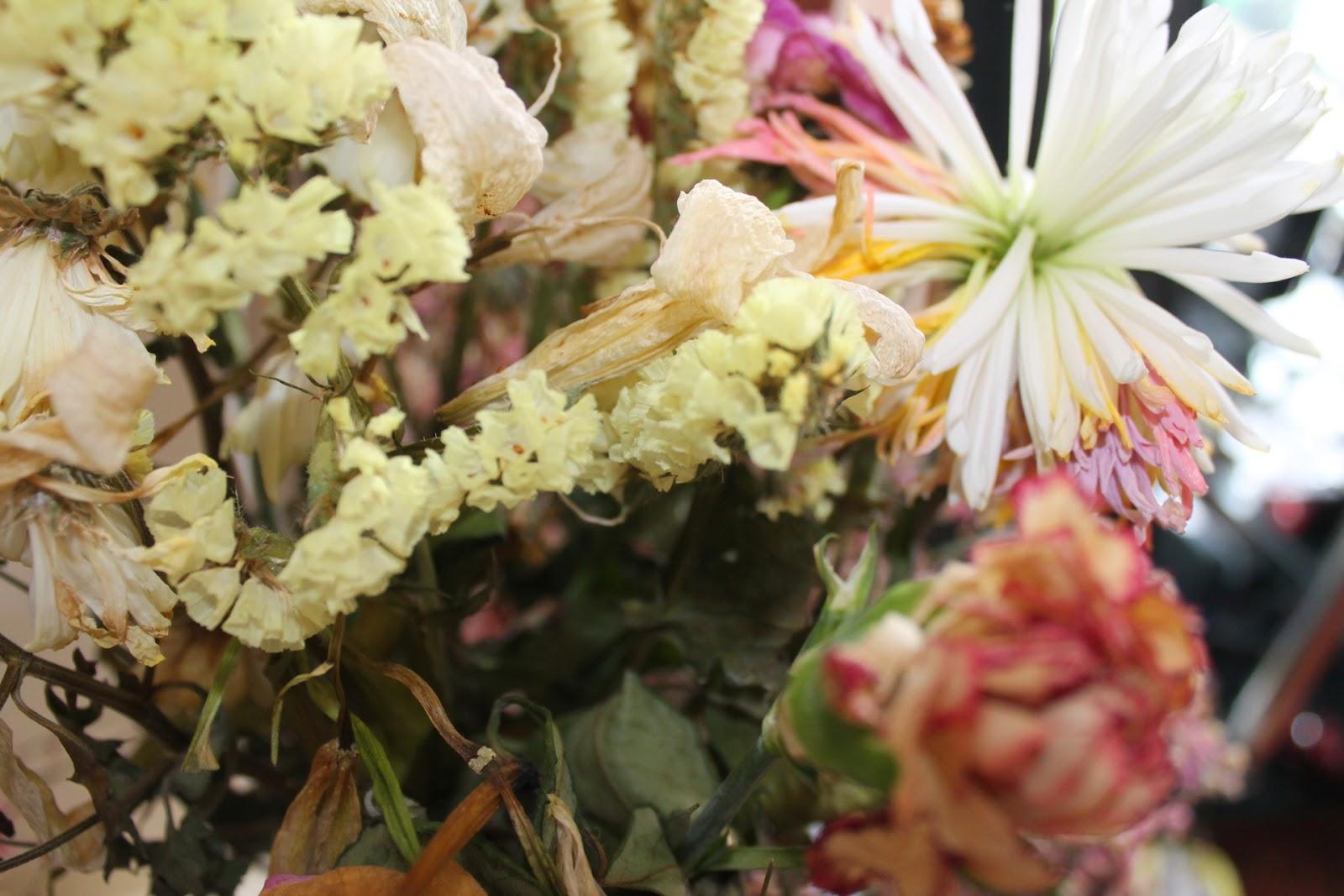 Flowers Beauty Images Flower Wallpaper Hd