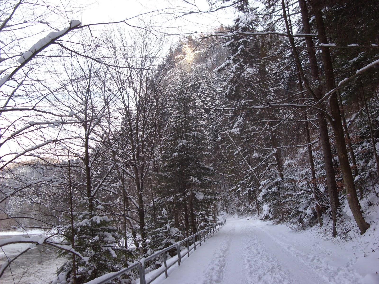 Droga pienińska zimą