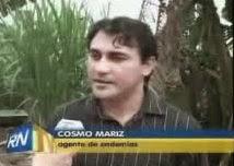 ACE COSMO MARIZ - RN.