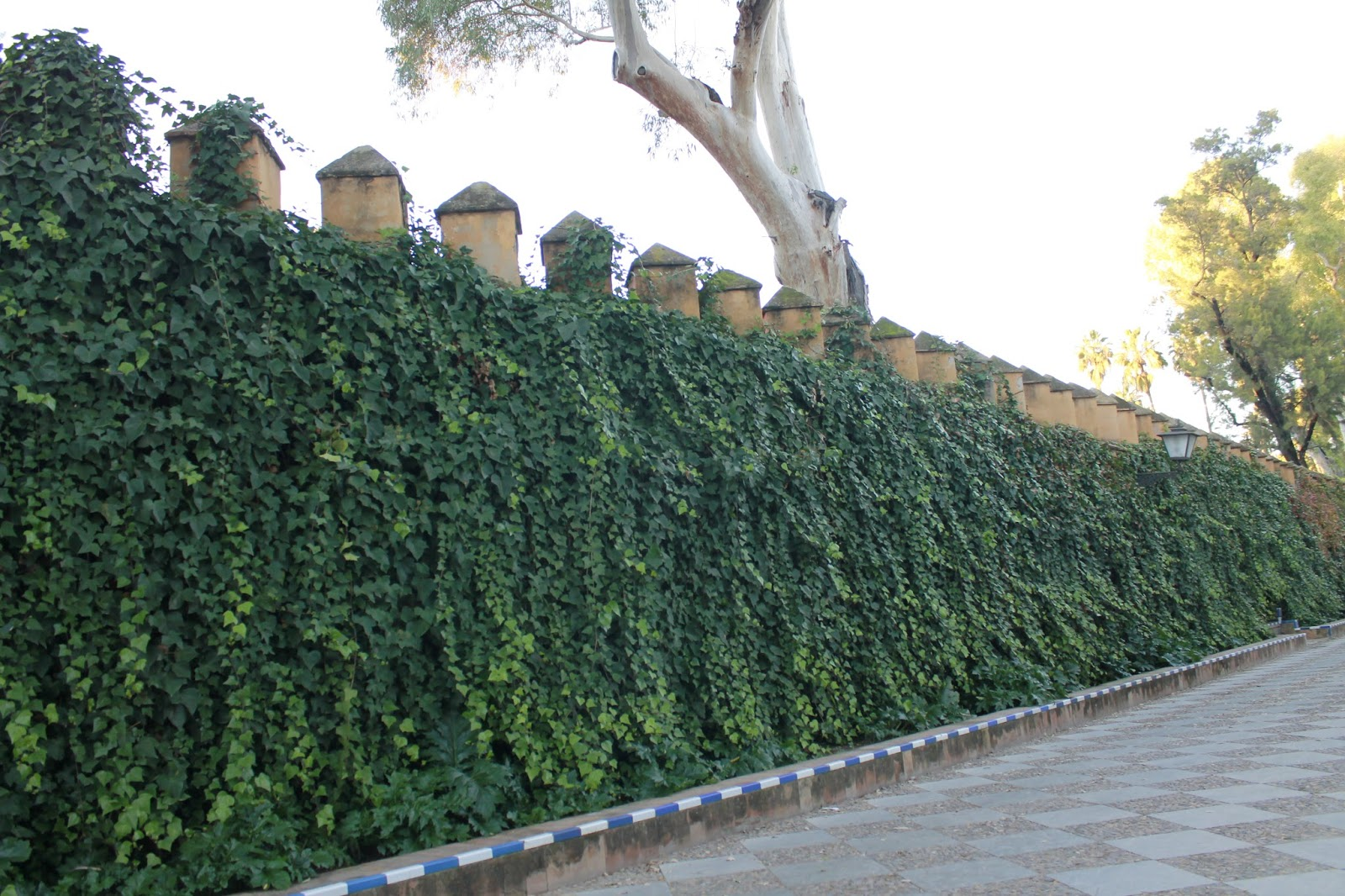 Curiosa sevilla jardines de murillo for Jardines de murillo