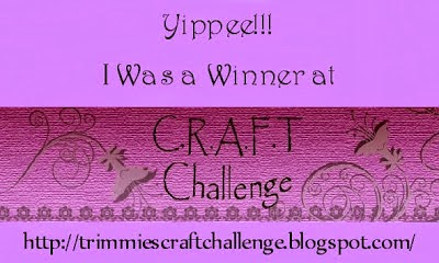 3 x C.R.A.F.T. Challenge Winner