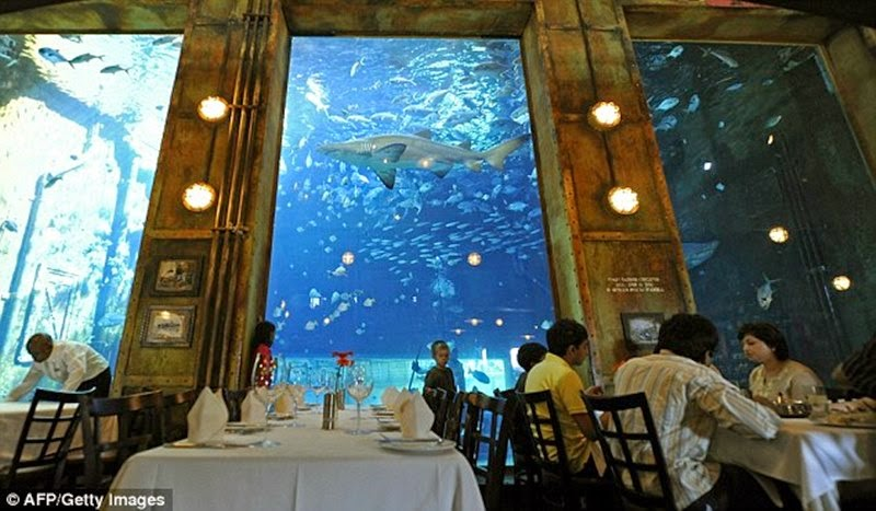 People lunch next to the window of a large aquarium with fish and sharks in the 'Hold Cargo' restaurant in Durban