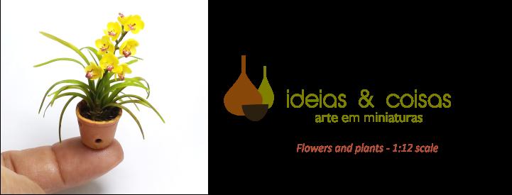 ideias e coisas