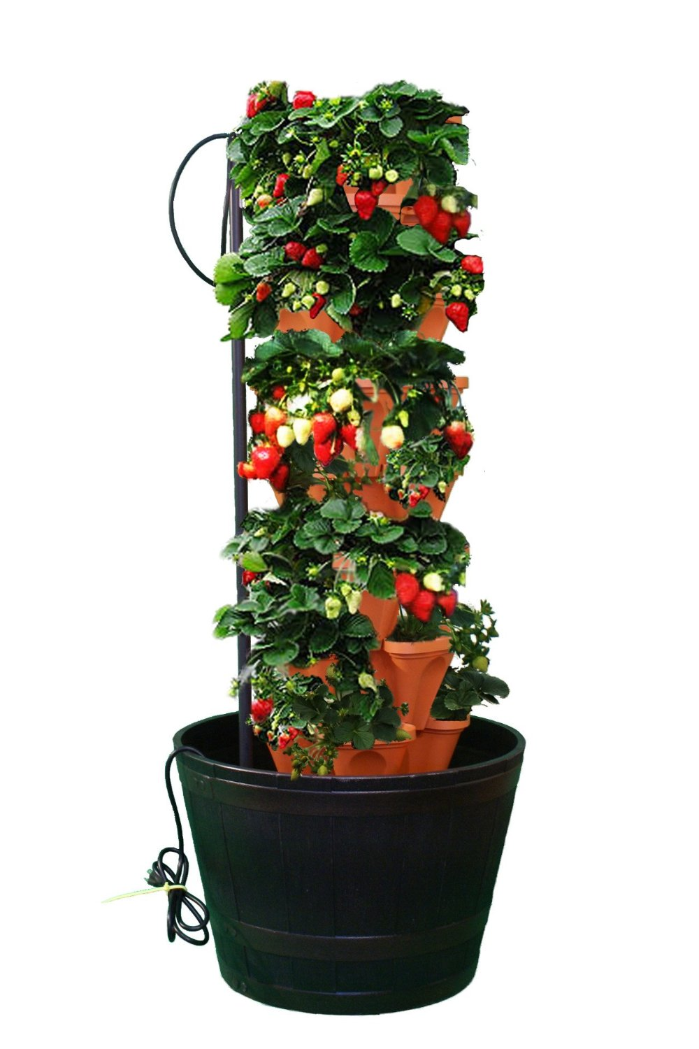 hydroponic systems grow a garden without soil tins 39 corner. Black Bedroom Furniture Sets. Home Design Ideas