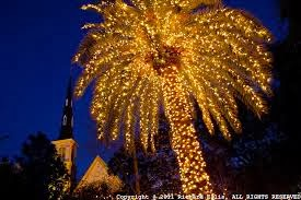 stories from the carolina coast merry charleston christmas