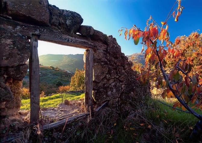 Otoñada Valle del Jerte 2013. Tercer premio