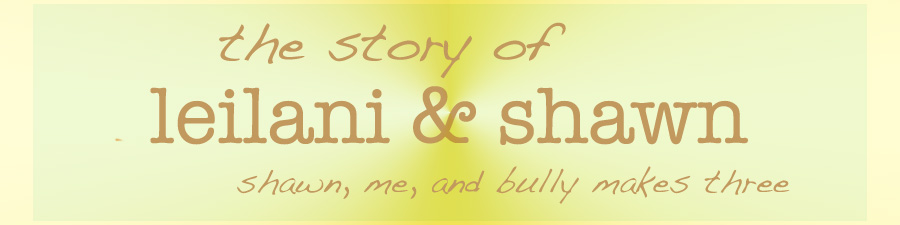 the story of leilani & shawn