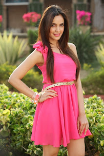 Actress Shazahn Padamsee Latest Pictures in Pink Short Dress  8.jpg
