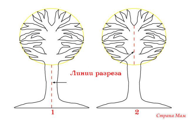Как сделать деревья из картона своими руками