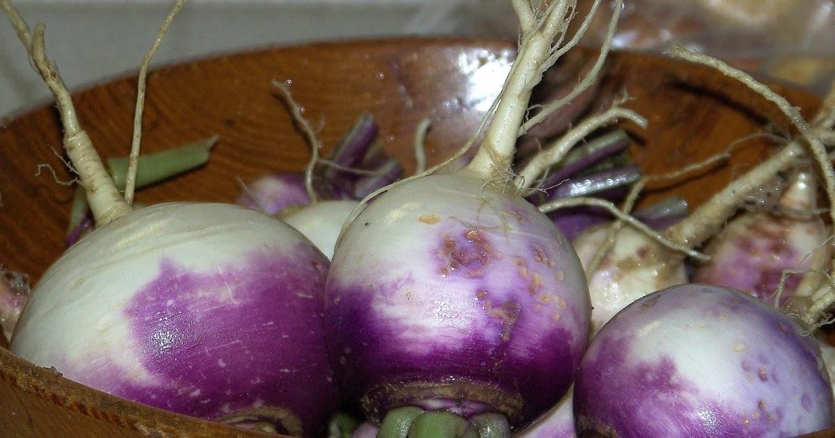 Hickery Holler Farm: Tip Toe through The Tulips