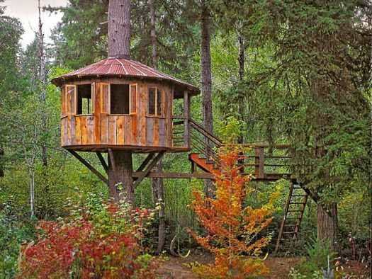 Ideas making a treehouse in the backyard for Diy tree house plans