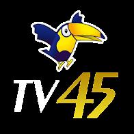 TV 45 Câmara Federal