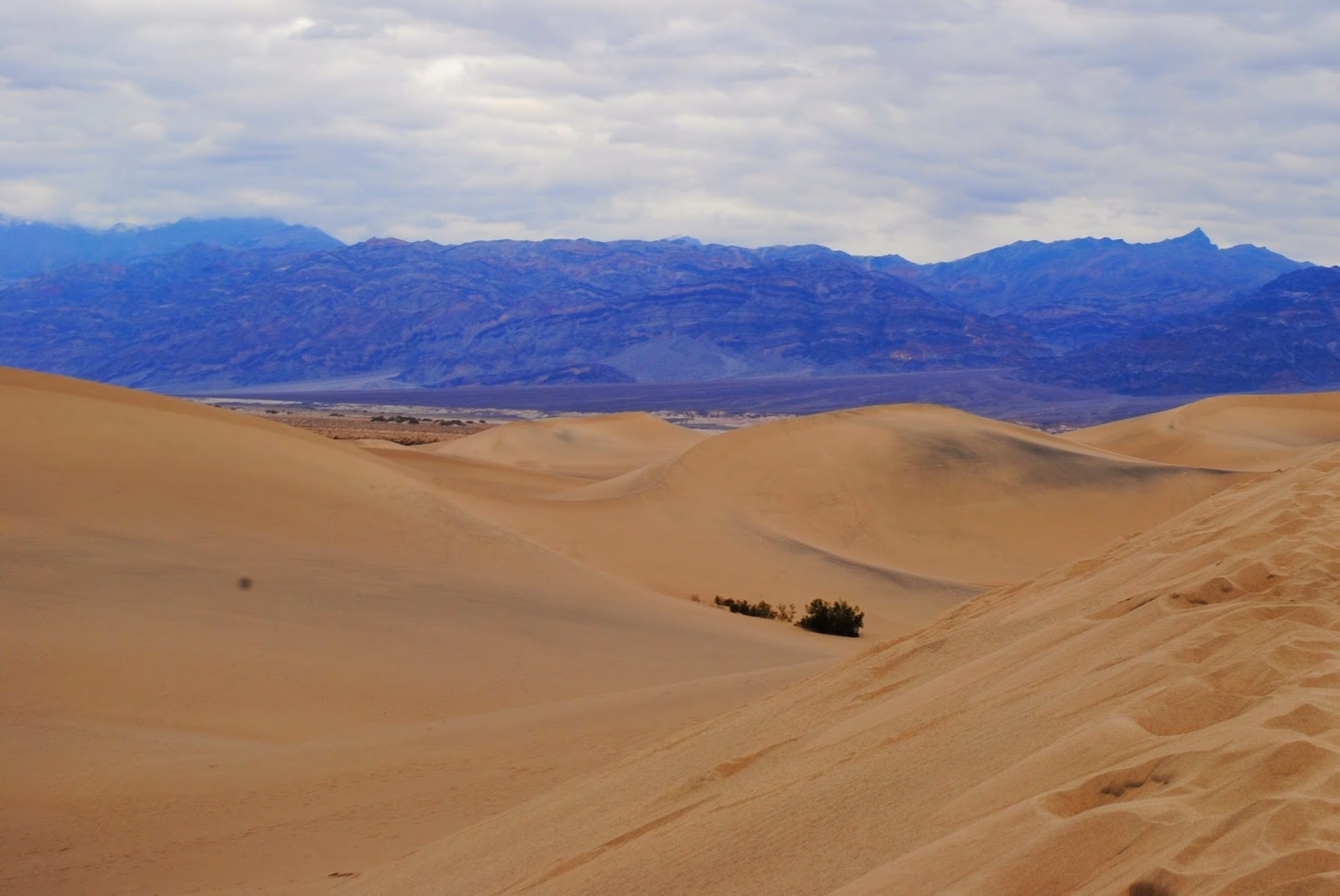 Visiting the Sand Dunes at Death Valley National Park on a day trip from Las Vegas