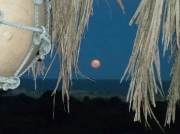 La luna desde El Cocal - (foto de Camping El Cocal)