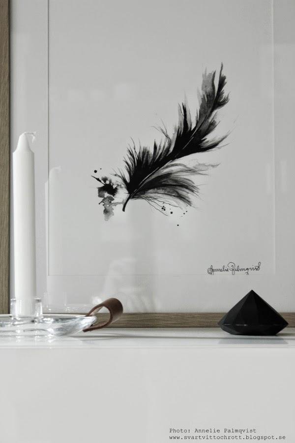 konsttryck, artprint, artprints, print, prints, poster, posters, tavla, tavlor, fjäder, fjädern, fjädrar, annelie palmqvist, dödskalle, döskalle, vitt, svart och vitt, svartvita, svarta, vit, vita, ateljé