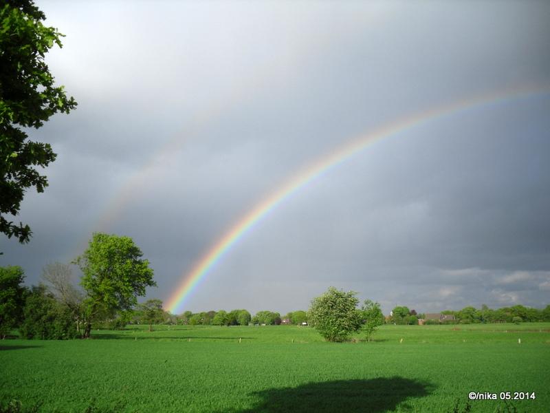 Regenbogen im Norden