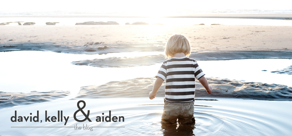 David, Kelly & Aiden | The Blog