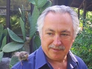 Giuseppe Marrocco