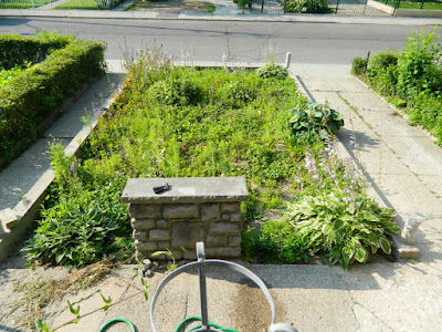 Garden cleanup Bloordale before Paul Jung Gardening Services Toronto