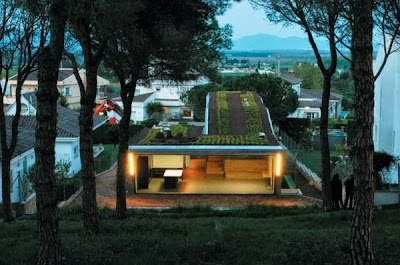 12 Inspirasi Rumah Dengan Green Roof 7