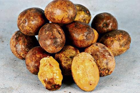 UXI - fruta típica do PARÁ