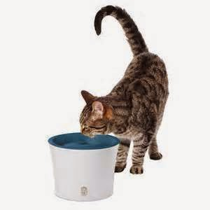 CatIt Design Senses Water Fountain | Exclusively Cats Veterinary Hospital, Waterford, MI