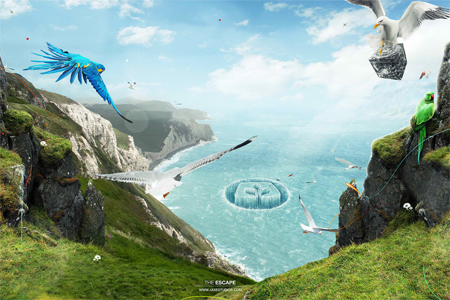 Nature Photo Manipulation: The Escape