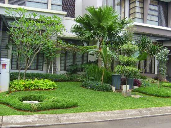 desain taman rumah minimalis samping rumah