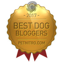 Best Dog Bloggers