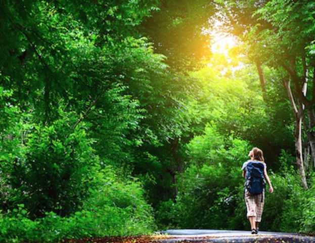 Feeling Down? Take A Hike - Walking In Nature Lowers Depression Significantly, Study Finds