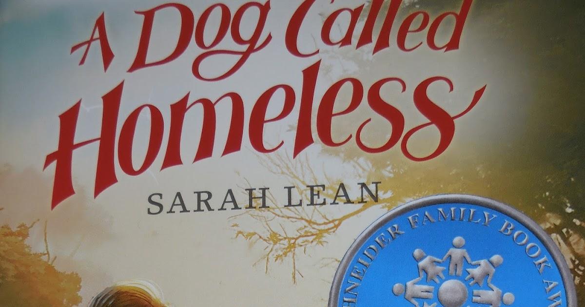 Books Children Treasure A Dog Called Homeless By Sarah Lean