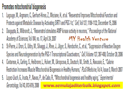 Mitochondria biogenesis