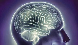 Do Brain Games Really Help Prevent Dementia