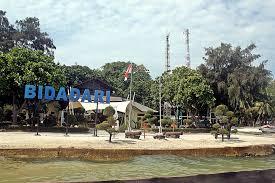 Pulau Bidadari, Benteng Hingga Lumba-Lumba