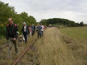 TRAIN EN MARCHE   Bollwiller-Guebwiller