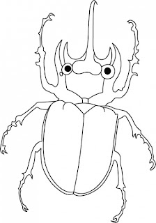 Beetle Coloring Pages Print