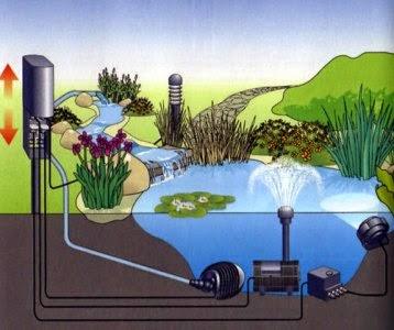 Acuarios leuka conexiones el ctricas para estanque for Modelos de estanques