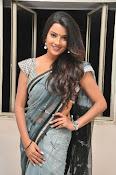 Jyothi seth sizzling saree photos-thumbnail-6